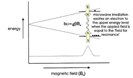Electron Paramagnetic Resonance Overview